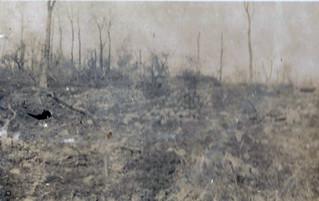 A French mortar dump