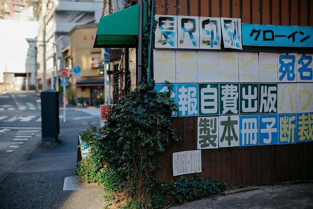 FUJI3693.jpg