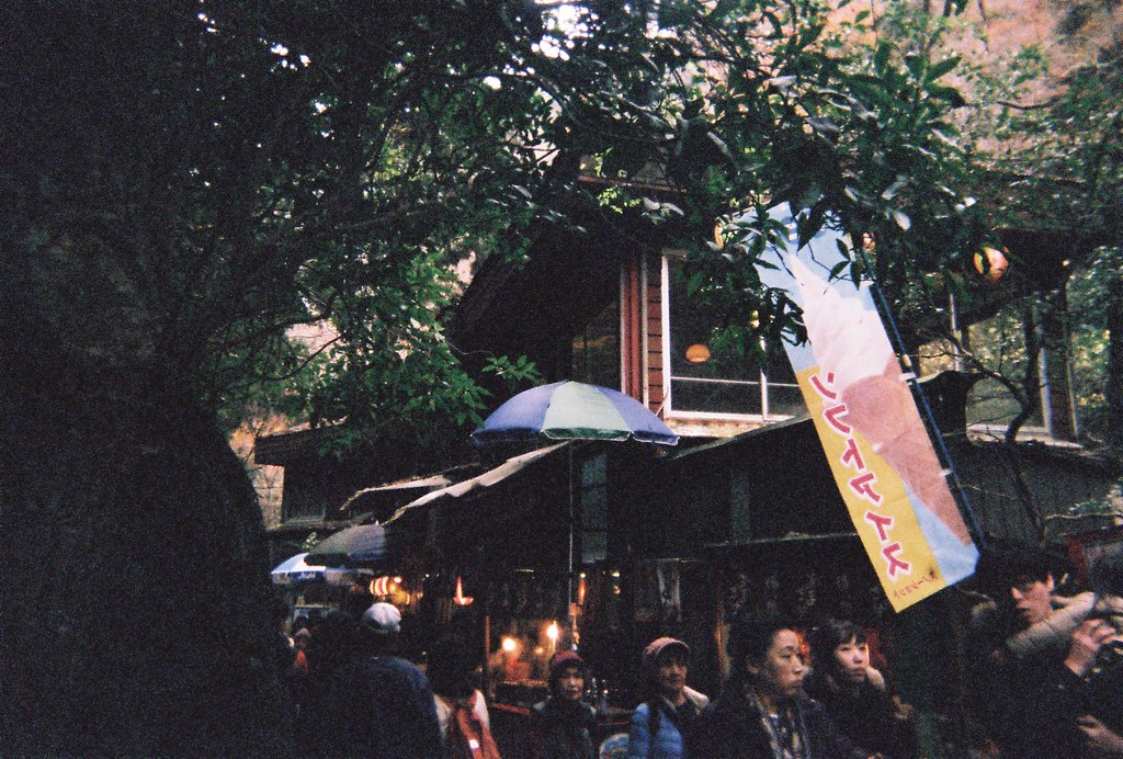 Osaka, Japan, Asia, Travel, Disposable Camera, Film, Minoh