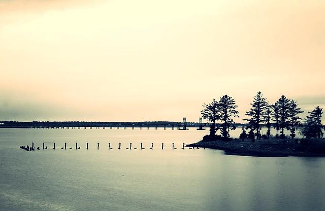 Bay, Bridge and Trees