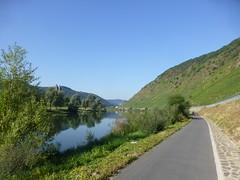 Morgens auf dem Moselradweg hinter Beilstein