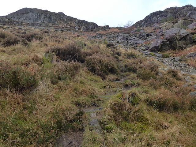 Mart Crag