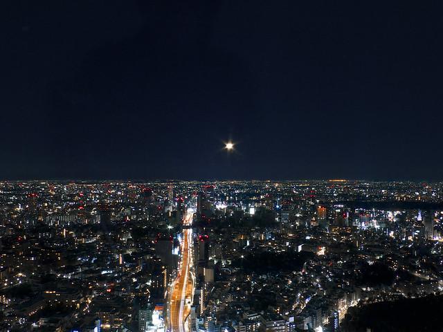 広大な夜空に浮かぶ半月