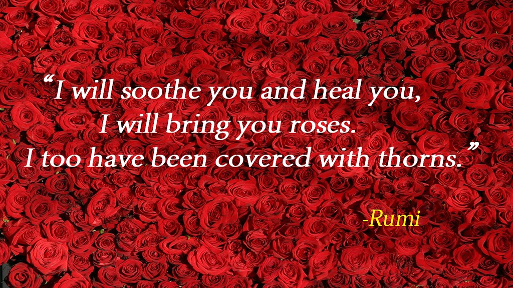 9 I Will Soothe You And Heal You I Will Bring You Roses Flickr