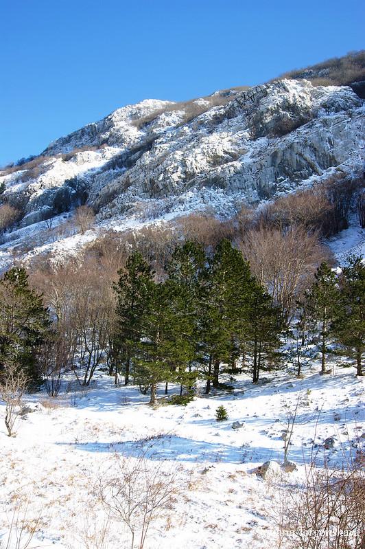 Январский пейзаж в долине