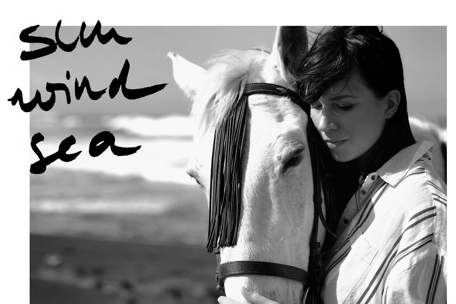 riding fuerte fuerteventura horse white reiten ausritt beach water ocean waves wild freedom happiness vila stripe blouse levi's jeans girl dreaming cats & dogs fashionblog modeblogger ricarda schernus berlin styleblog deutschland 5