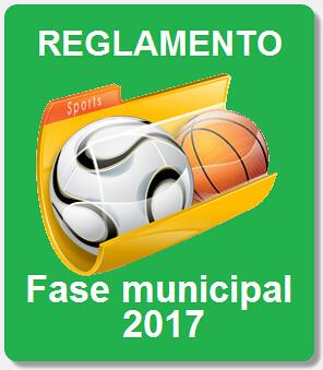 icono reglamento fase municipal