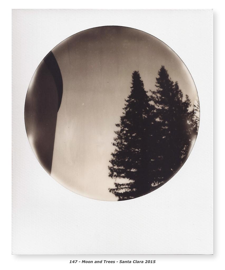 Joline Godfrey and the Polaroid Corporation (A) and (B) TN