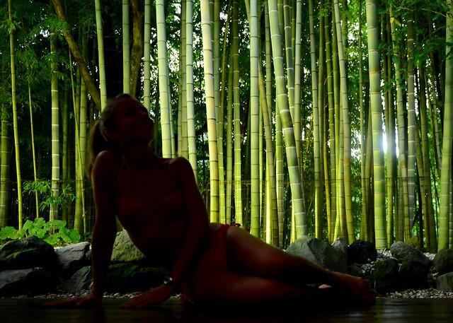 En el onsen de Hakone junto a un bosque de bambu