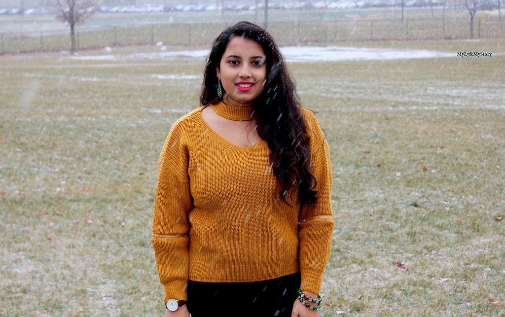 Snow Fall (5)