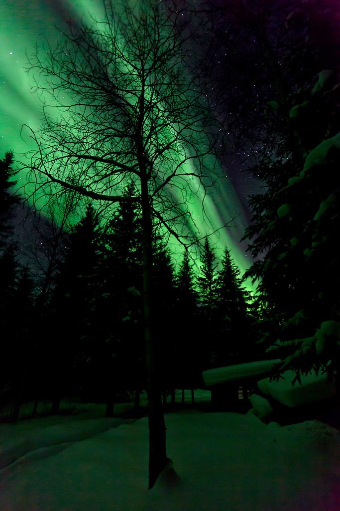 030117 - Green Aurora illuminates a dark night