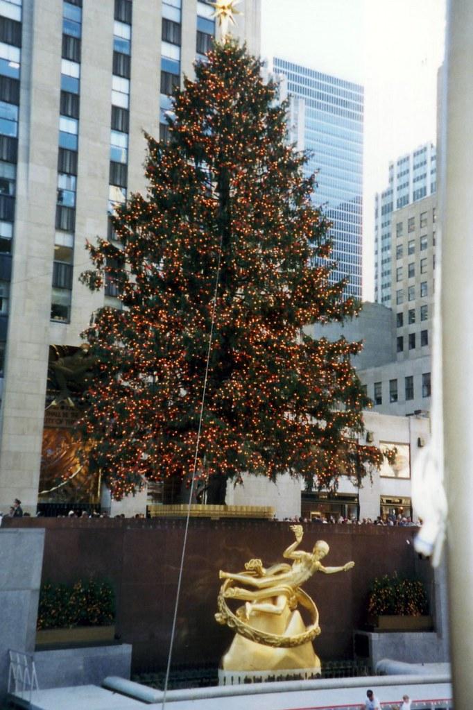 On The Wall Christmas Tree