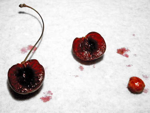 I gave my love a cherry...