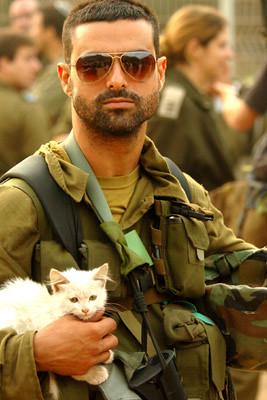 IDF soldier - Savior of Kittens