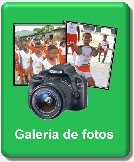 icono galeria de fotos nuevo 1