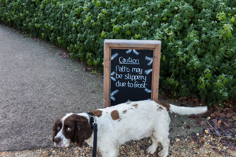 The sign has got Max a bit worried
