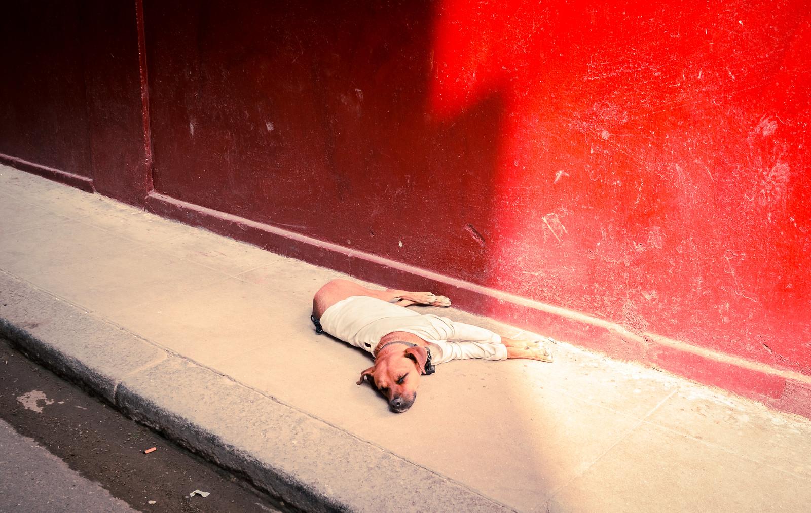 Streets of Havan - Cuba | by IV2K