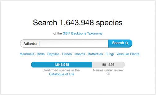 GBIF Search bar - Adiantum