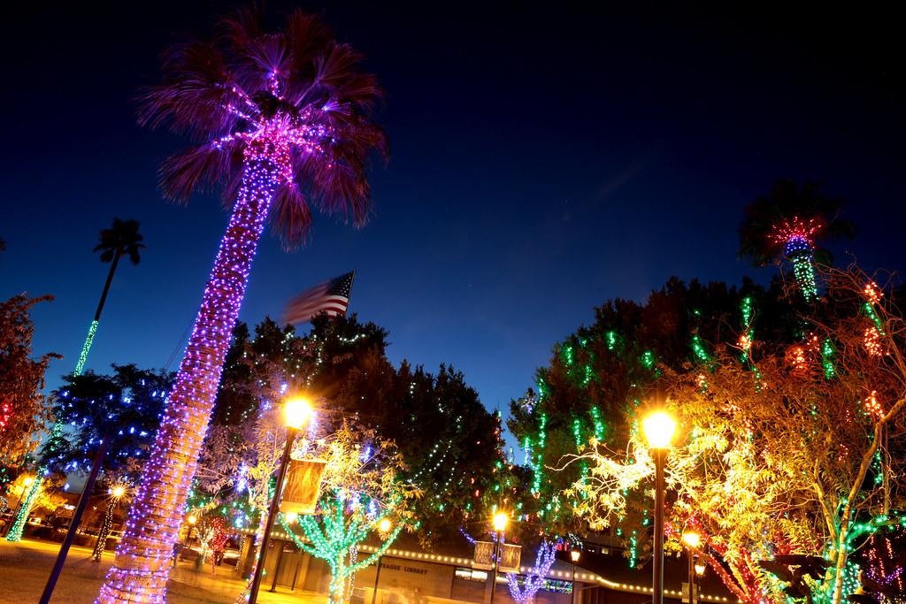 Light Up Palm Tree Decorations