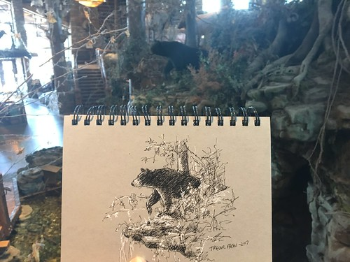 When you want to sketch nature, but it's below freezing, Bass Pro Shop.