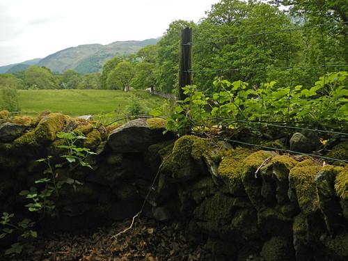 A stone fence on the Precipice Walk in Dongellau, Wales