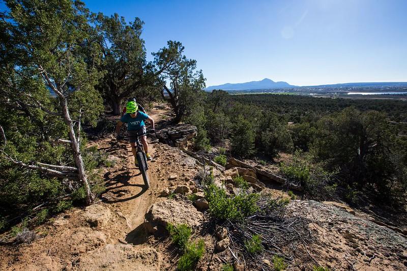 Phil's World Mountain Biking
