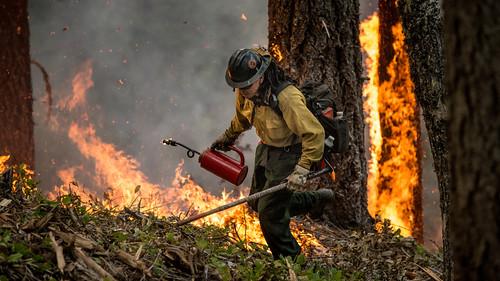 Firefighter on the San Juan Fire