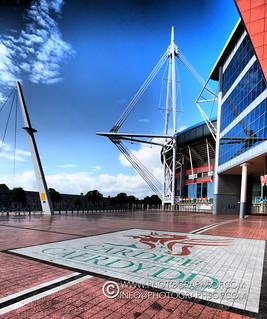 Cardiff (8 photos)