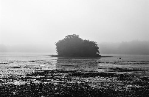 new england fog i took this capture of a receding