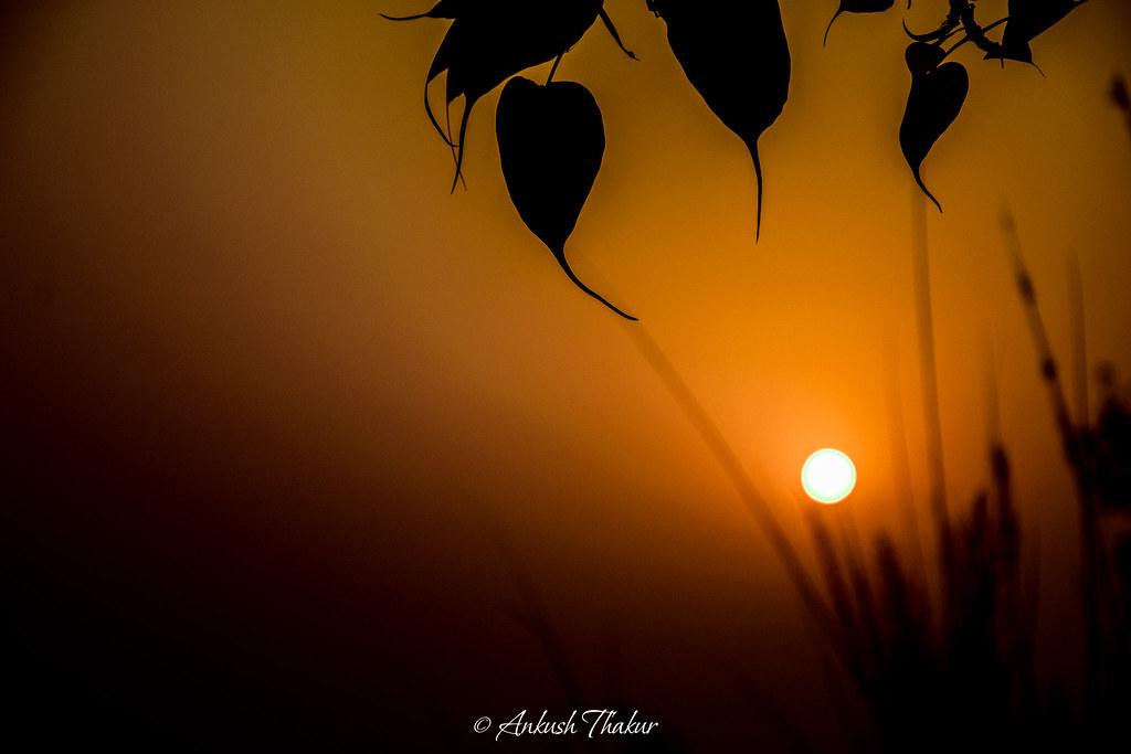 thakur good morning happy new year to everyone by ankushthakur
