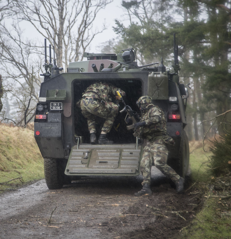 Armée Irlandaise/Irish Armed Forces - Page 2 33265809176_edc8911359_c