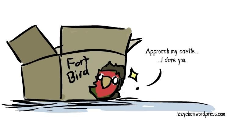 lovebird in a cardboard box