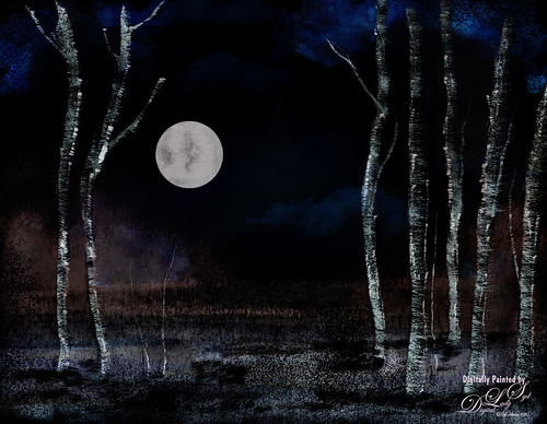Image of a full moon in an Aspen Tree forest