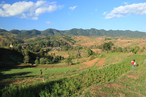 Fields of agricultural land, Kalaw to Inle Lake Trek