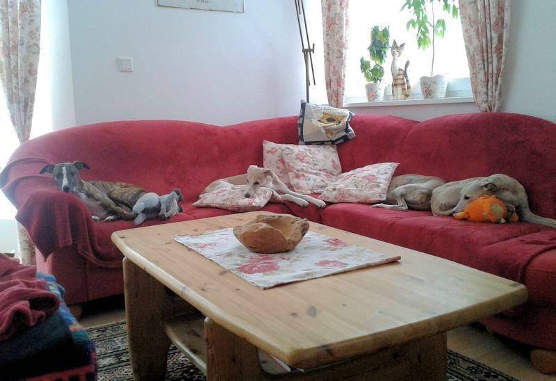 Alle 4 auf der Couch