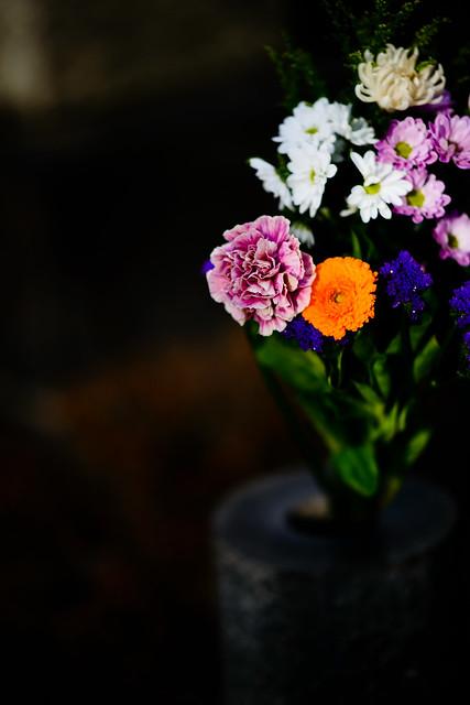 Simplicity - Flower