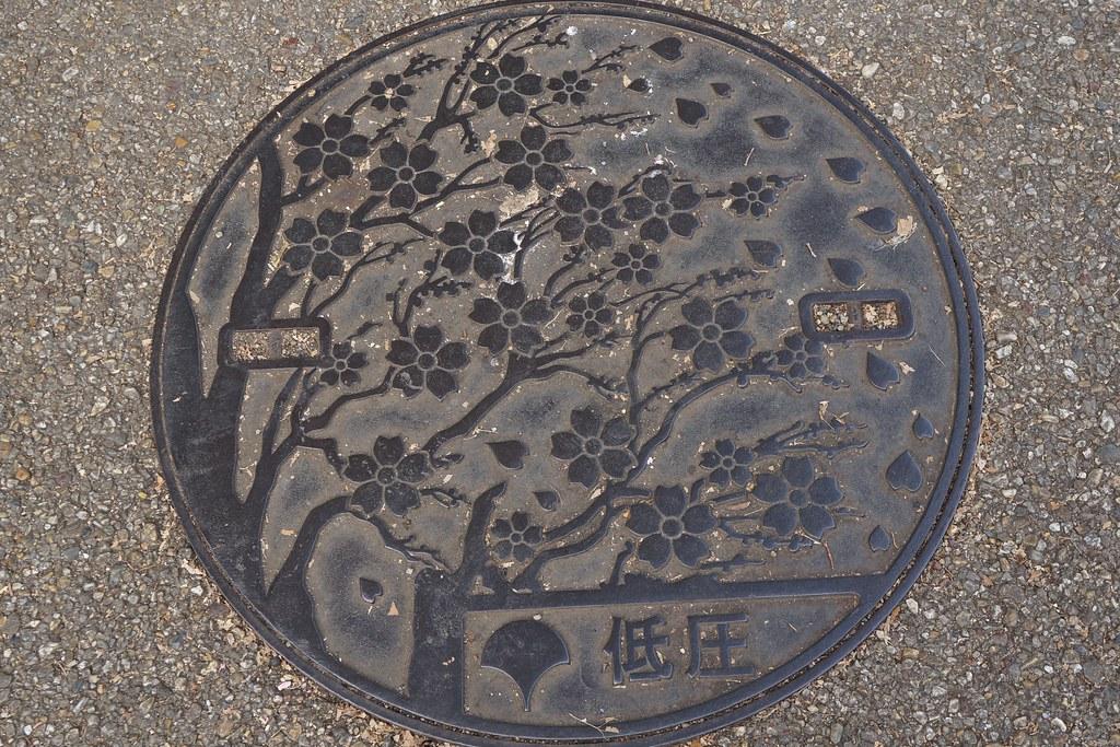 Plaque de cerisiers