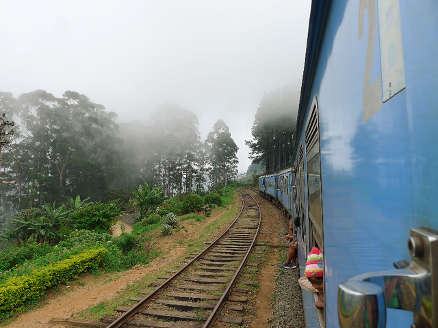 245-train