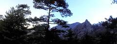 Ravin de Laoscella: le Monte Saltare