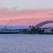 Noordam Sydney Harbour-9828