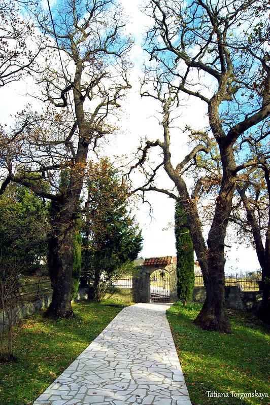 Вид из парка в сторону ворот