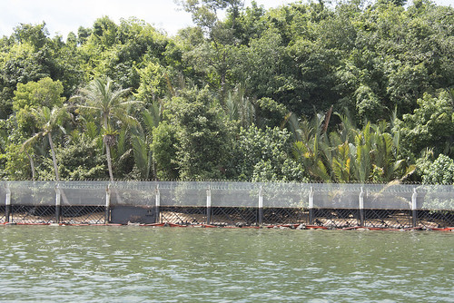 Security Fence on Northern Ubin after oil spill in East Johor Strait