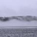 Mist on Soyers Lake, 1992