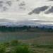 Dunstan mountains