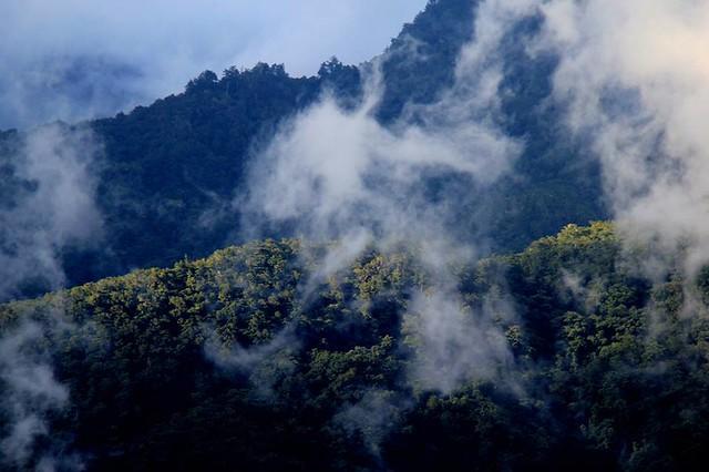 美麗的山林,曾是原住民族的傳統獵場。圖片提供:Fotol. Ciang