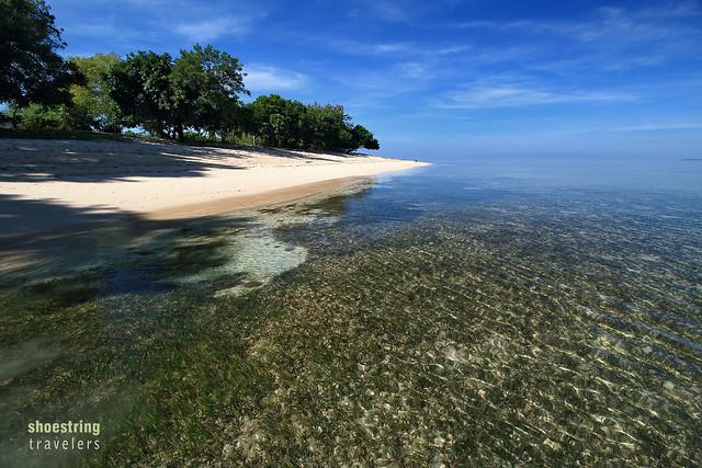 sea grass at Potipot Island