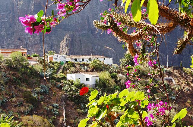 Masca from El Guanche, Buenavista del Norte, Tenerife