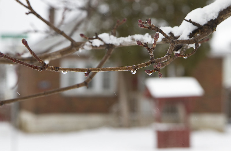 droplets and snow