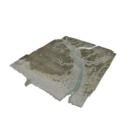 3D view of La Clica saltmarsh | by fastspaceproject