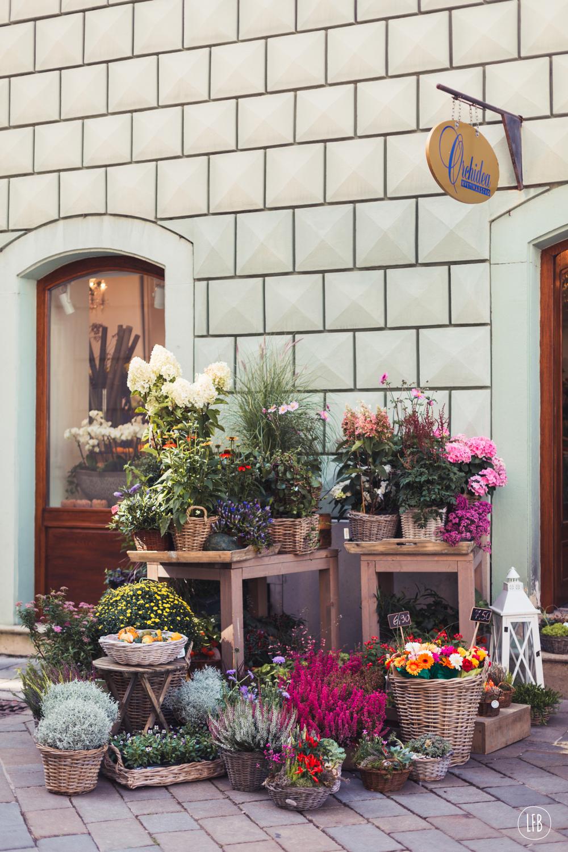 Images of Bratislava taken by Rae Tashman for lovefromberlin.net